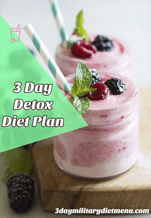 3 Day Detox Liquid Meal Plan