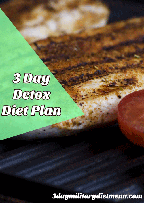3 Day Detox Meal Plan Solids